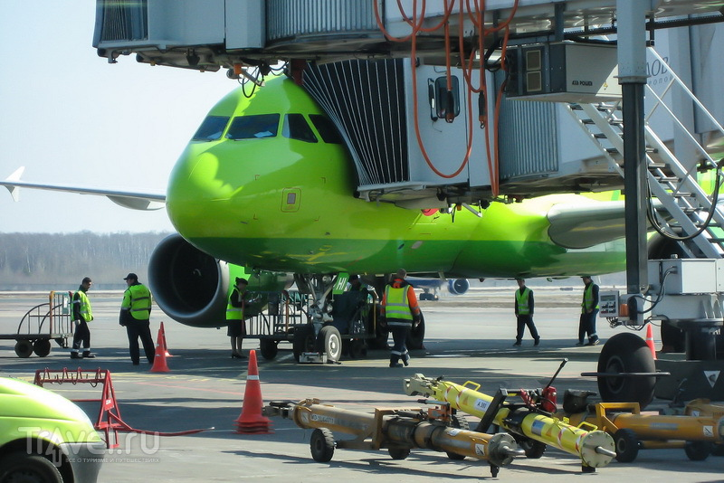 Авиакомпания S7 не посадила на оплаченный рейс / Россия