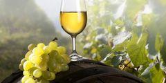 В Севастополе пройдет фестиваль крымских вин