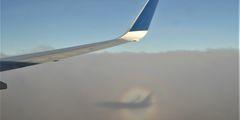 Власти Кипра компенсируют перелет домой некоторым пассажирам Cobalt Air